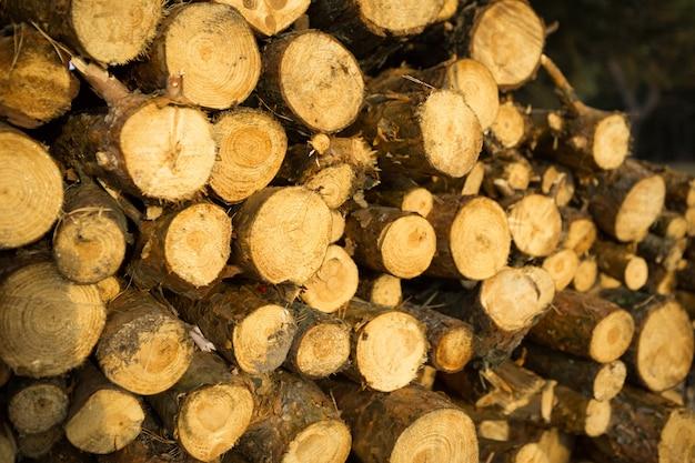 장작 클로즈업-나무 시골 배경으로 스택에 로그의 라운드 섹션. 코티지 코어, 자연, 생태, 고체 연료. 복사 공간