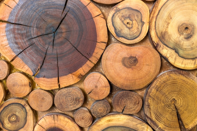 Round wooden unpainted solid natural ecological soft colored brown and yellow crackled stumps background, tree cut sections with annual rings different sizes and forms, background texture.