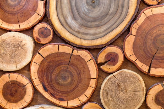 Round wooden unpainted solid natural ecological soft colored brown and yellow crackled stumps , tree cut sections with annual rings different sizes and forms, background texture.