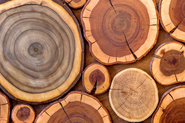 Round wooden unpainted solid natural ecological soft colored brown and yellow crackled stumps