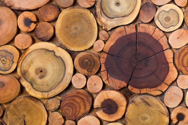 Round wooden unpainted solid natural ecological soft colored brown and yellow stumps background, tree cut sections different sizes for pad mat background texture.