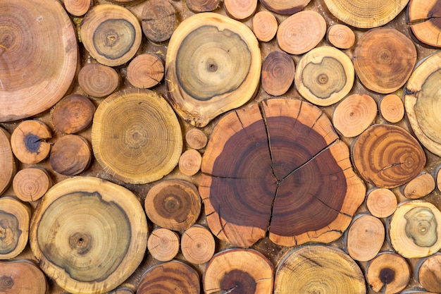 Round wooden unpainted solid natural ecological soft colored brown and yellow stumps