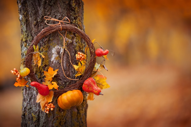 Round wreath with on natural tree on fall background. sunny autumn day, daylight. copyspace