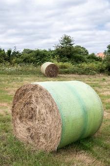 干し草のround