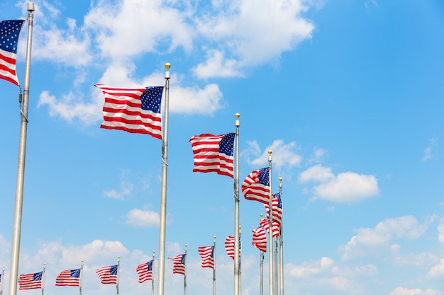 워싱턴 dc에서 행 미국 국기