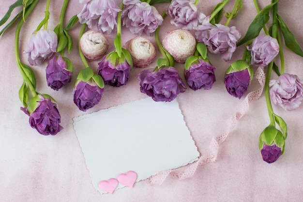 A row are purple tulips and two pink hearts from satin, a ribbon of lace and empty sheets of paper