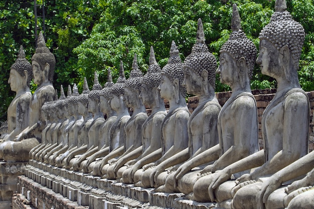 A row of buddha images in wat yai chai mongkol, ayutthaya, thailand.