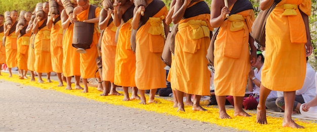 Row of buddhist monks in thailand
