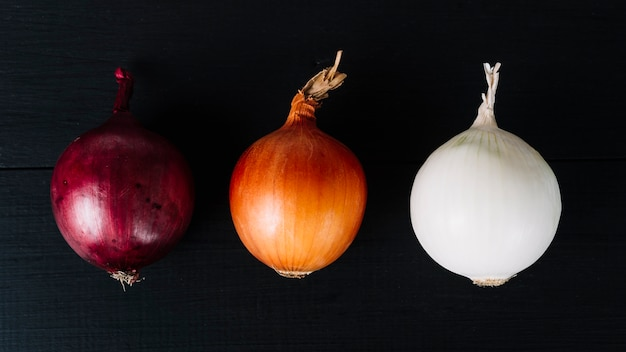 Row of colorful onions on black background
