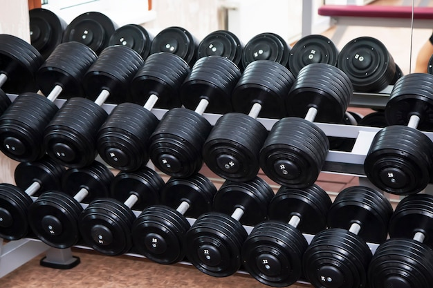Row of hand barbells weight training equipment