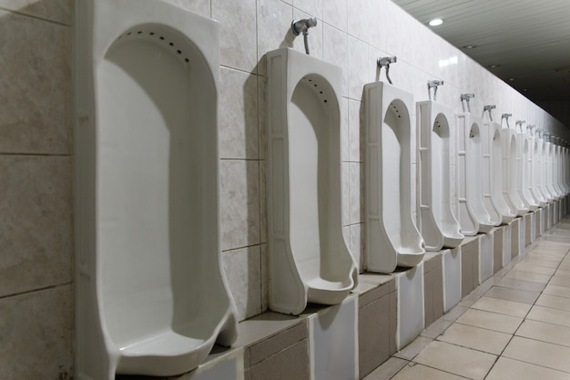 Row of indoor urinals