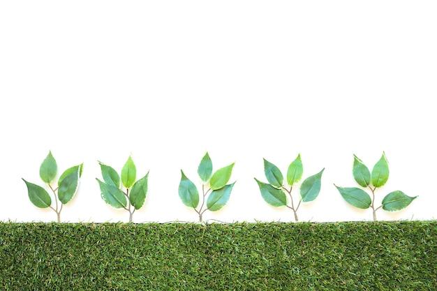 Ряд искусственных ветвей