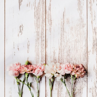 Row of carnation flowers arranged on wooden table