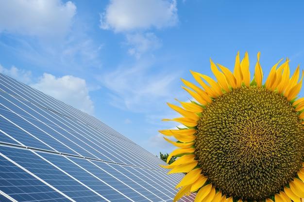 Ряд солнечных батарей на солнечной ферме и дом под голубым небом