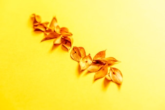 Row of yellow plant leaves in line over yellow texture table and background.