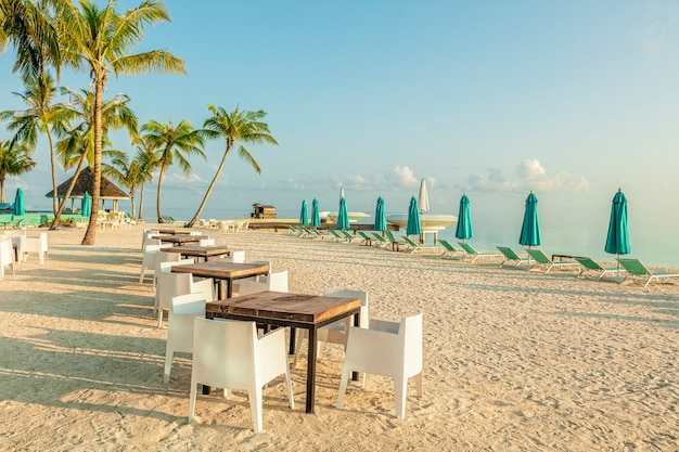 Row of table and white chairs on tropical beach early in the morning