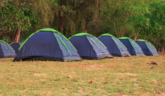 Row of tent for camping