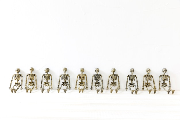 Row of toy skeletons