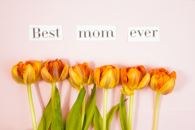 Row of tulips on coloful background with space for message. mother's day background. top view