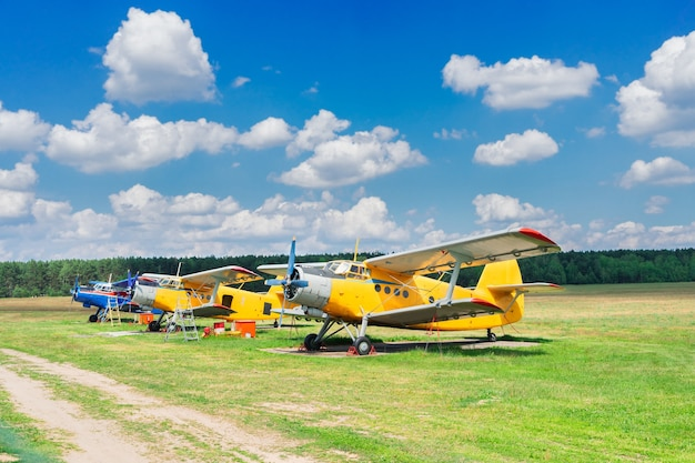 Row of vintage airplanes in summer field under blue sky