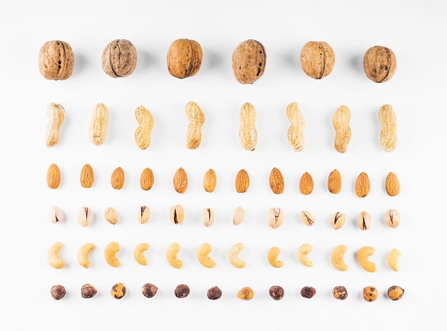 Row of walnuts; peanuts; almonds; pistachios; hazelnut and cashew nuts on white background