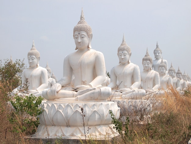 Row of white buddha statue on the field for worship.