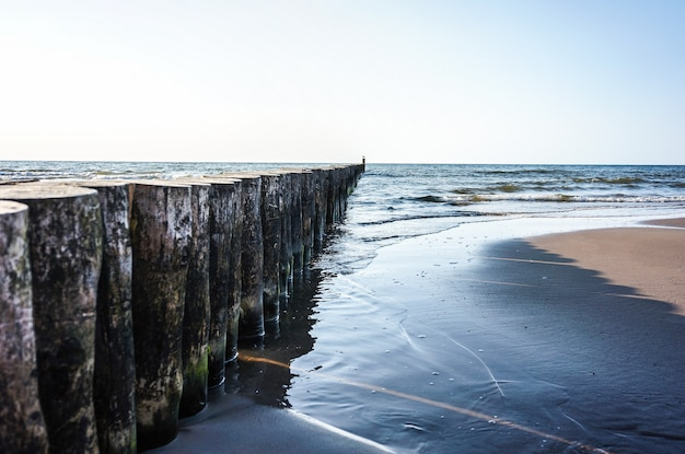 Row of wooden logs on the beach of sianozety, poland