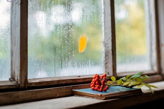 Rowan branch on the  of the village wooden wet window