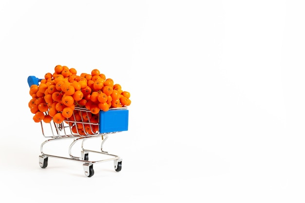 白い背景の上のスーパーマーケットの小さなカートに赤いベリーとナナカマドの枝