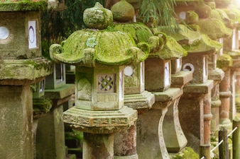 Rows of ancient stone, concrete and wooden lanterns covered in moss. Nara park, Japan