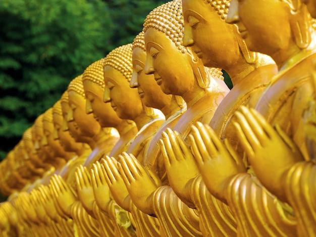 Строки статуй будды в храме, таиланд.