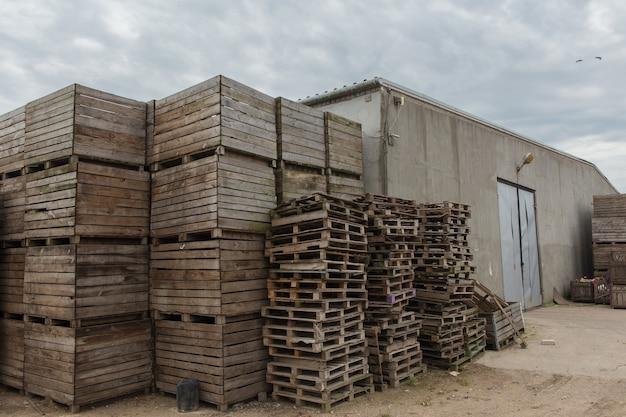 Ряды деревянных ящиков и поддонов для овощей на складе. производственный склад. растительная промышленность