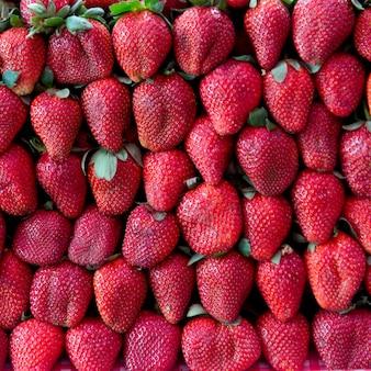 Rows of strawberries for sale at market stall, arcos de san miguel, san miguel de allende, guanajuat