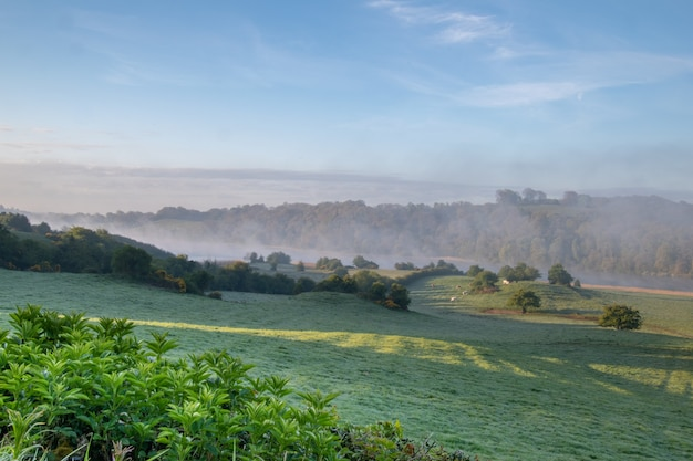 Rual ireland.foggy sunrise over the farmland in the midlands of ireland.