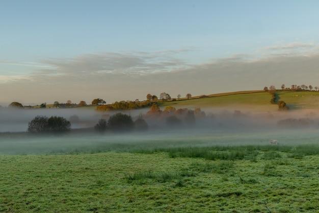 Руальная ирландия. туманный восход солнца над сельхозугодьями в центральной части ирландии.