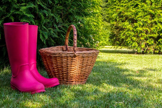 Rubber boots and wicker basket stand on glade in sunny summer forest.