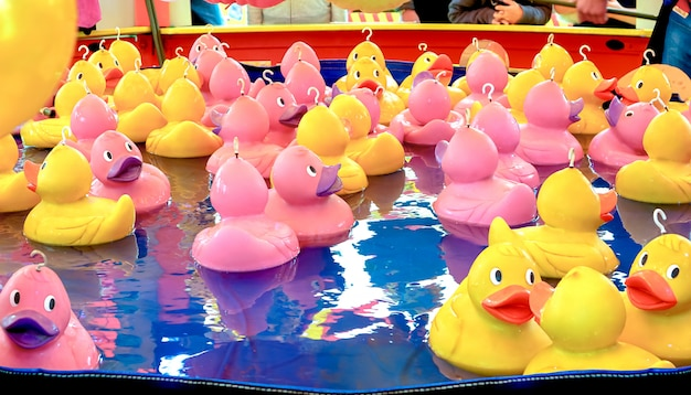 Rubber duck fishing game.