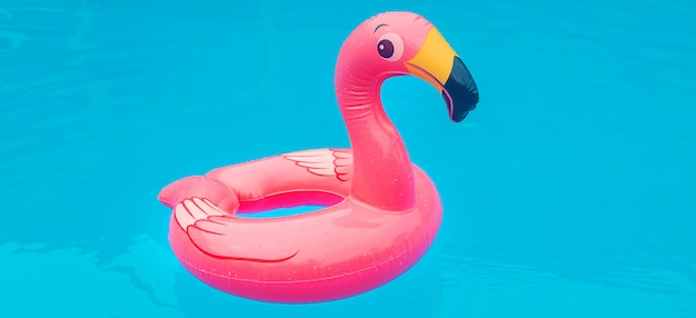 Rubber flamingo in a pool