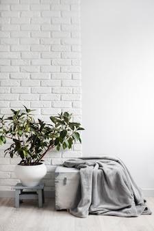 흰색 꽃 냄비에 고무 식물(ficus elastica)과 흰색 나무 상자에 회색 부드러운 양털 담요. 배경에 벽돌이 있는 흰 벽