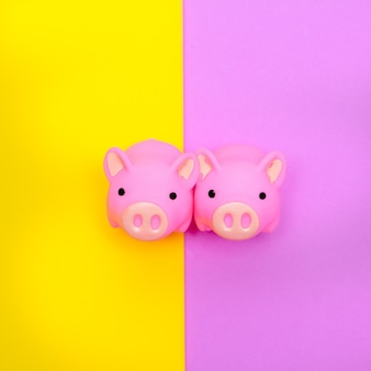 Rubber toys piglets on colorfull background. minimal flat lay art