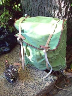 Rucksack - backpack und spangle game hen