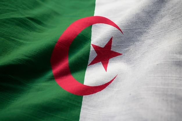 Ruffled flag of algeria blowing in wind