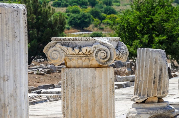 Ruins in the ancient greek city ephesus or efes on the coast of ionia sea in selchuk