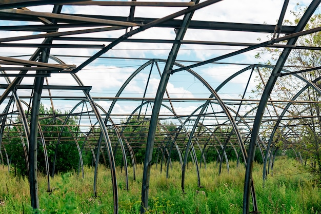 Ruins of the greenhouse complex among thickets, crisis of agricultural production