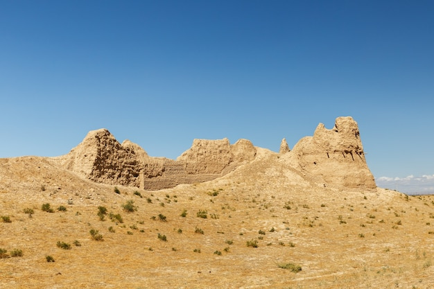 カザフスタン南部の古代都市サウランまたはサウランの遺跡。破壊された要塞の壁。