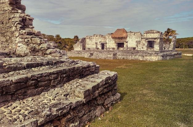 緑の牧草地に浸ったマヤの建物の遺跡:メキシコのトゥルムにあるマヤ複合施設の一部の眺め