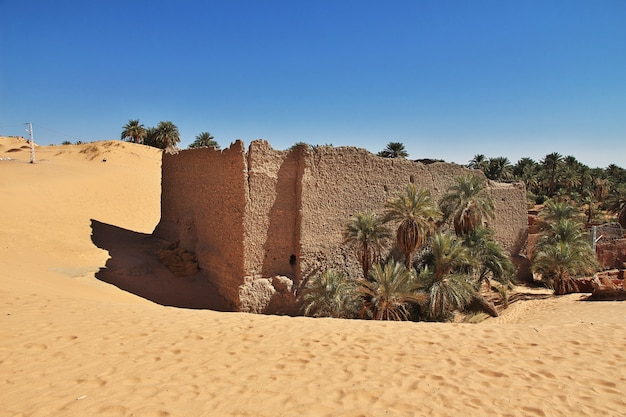Ruins of timimun abandoned city in sahara desert, algeria
