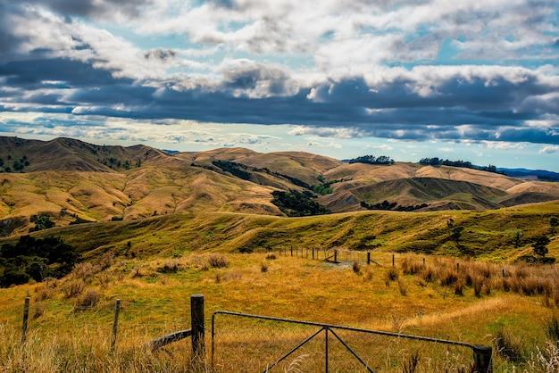 와이라 라파 (wairarapa)의 토라 해안 (tora coast) 근처 마른 언덕에있는 농촌 농업 농장 국가
