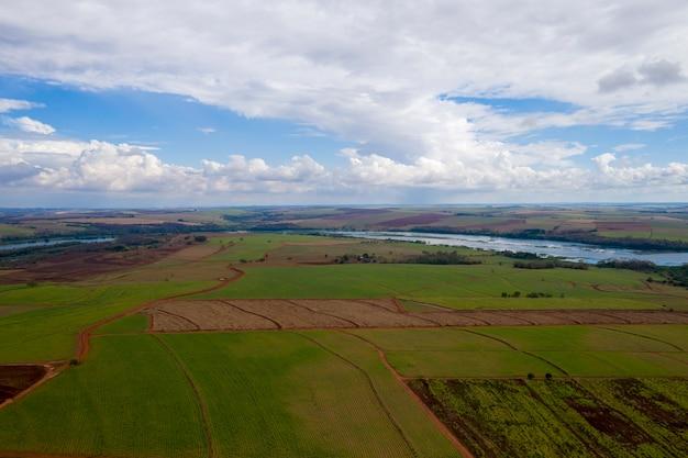 Сельская местность с плантациями и рекой тиете