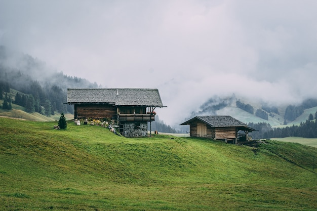 Rural area with wooden houses surrounded by forests with hills covered in the fog on the